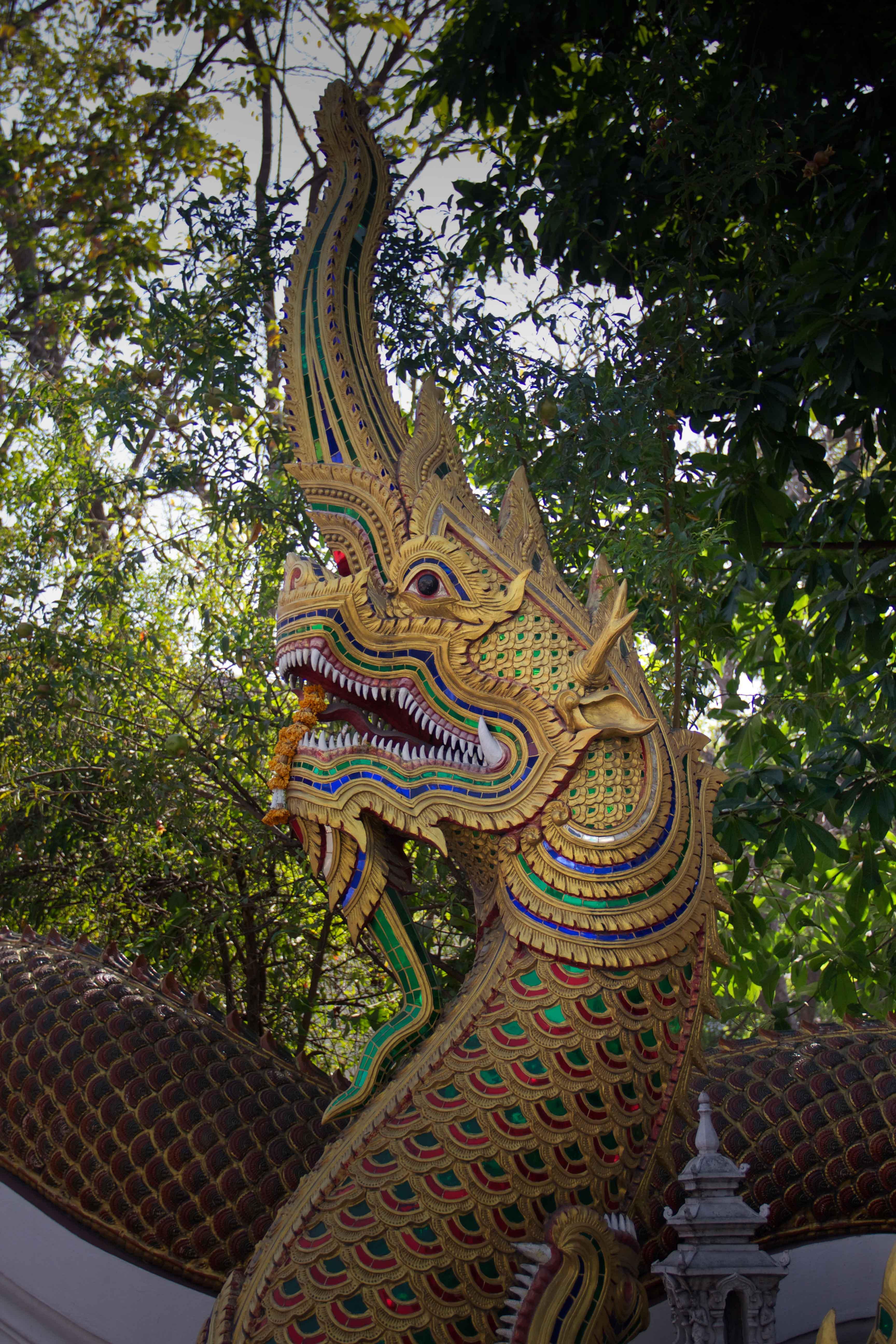 Chiang Mai | Walking Through Wonderland